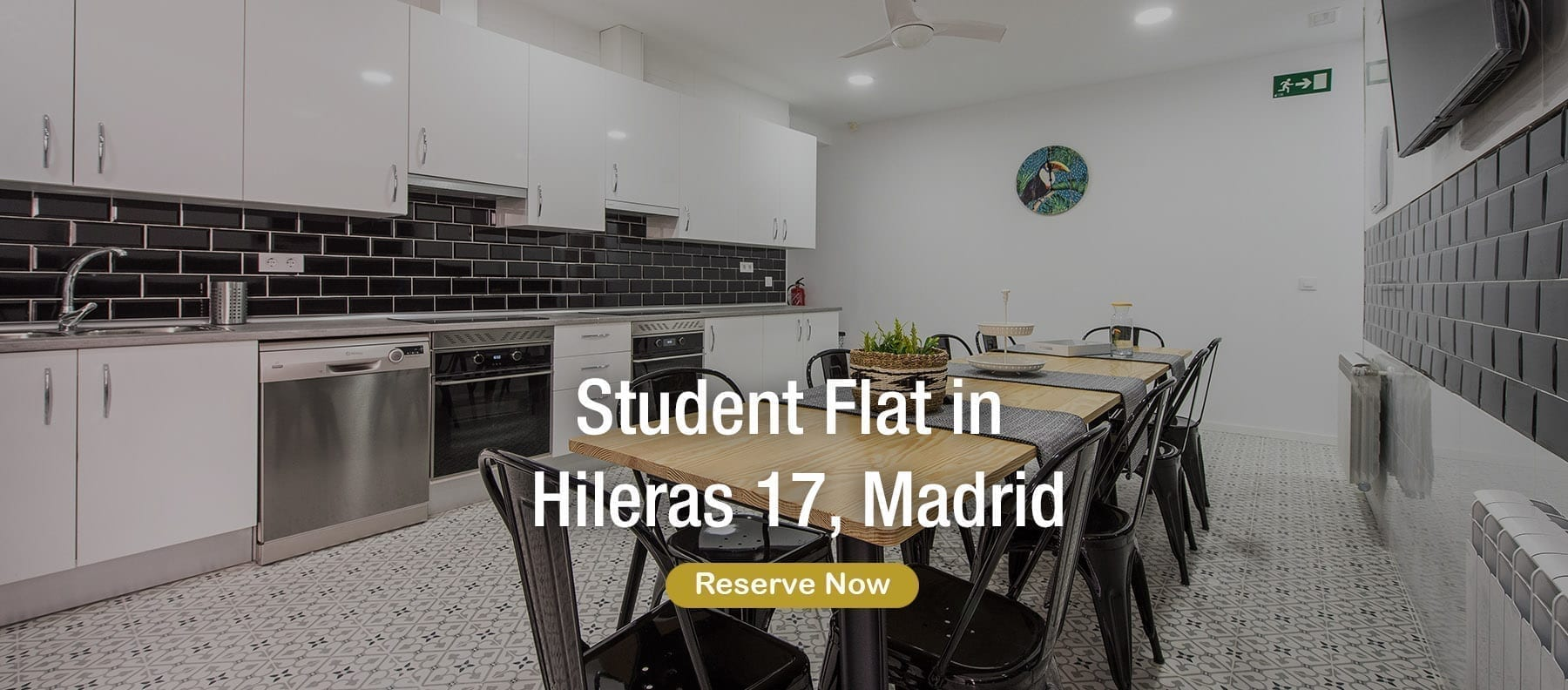 student flat in madrid