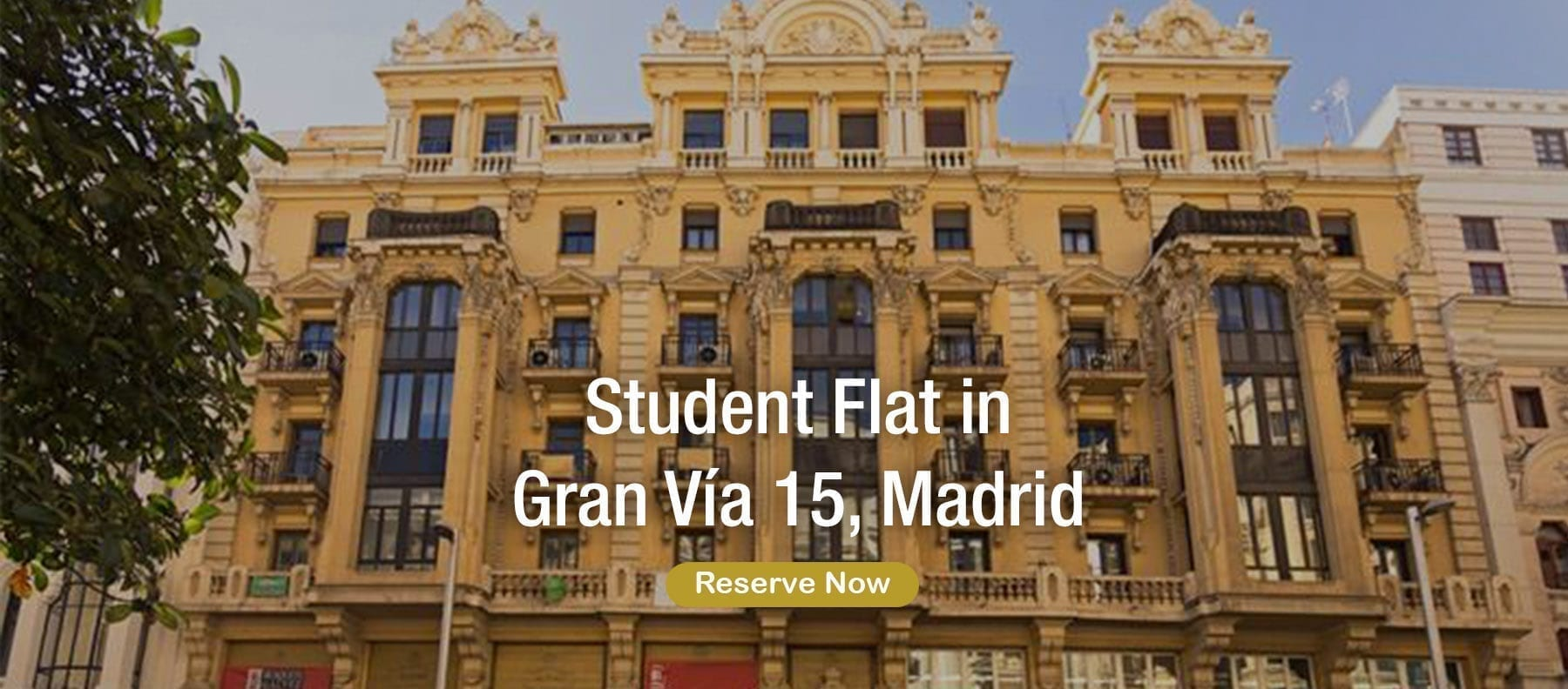 student flat in gran via madrid